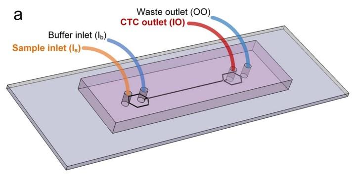 Microfluidic Device (Ian Papautsky)